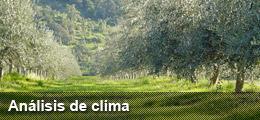 Análisis de clima